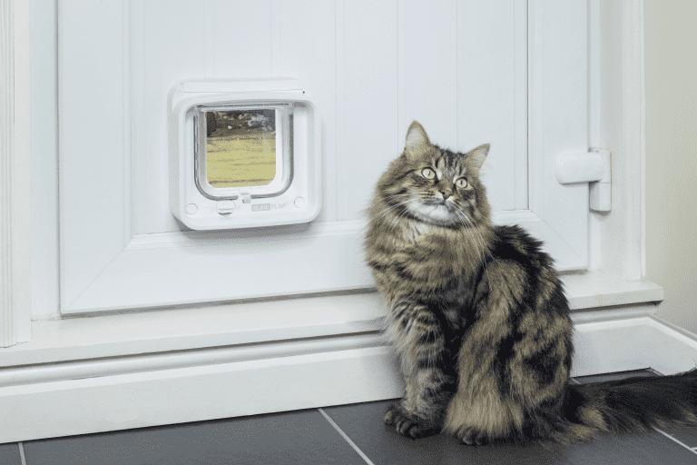 sureflap_microchip_cat_flap_connect_colin_6-768x512-1_optimized